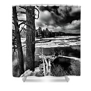 Fallen Trees In The Moose River Shower Curtain