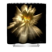 Falling Angel Shower Curtain