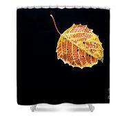 Falling Birch Leaf Shower Curtain