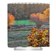 A Fall Day.  Shower Curtain
