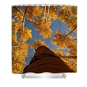 Falling Sky Shower Curtain