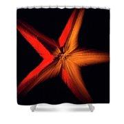 Falling Starfish One Shower Curtain