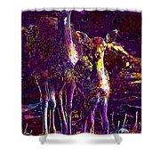 Fallow Deer Doe Fawn Hirsch Young  Shower Curtain