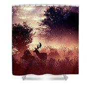 Fallow Deer In Fairytale World Shower Curtain