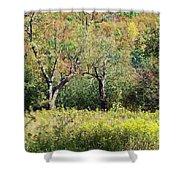 Fallow Meadow Shower Curtain