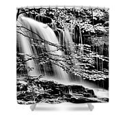 Falls And Trees Shower Curtain