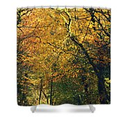 Falls Gold Shower Curtain