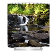 Falls On Sweet Creek Shower Curtain