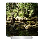 Falls Park Shower Curtain