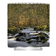 Falltime In Skamania County Shower Curtain