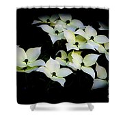 Family Gathering Shower Curtain
