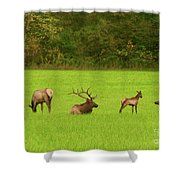 Family Get Together Shower Curtain