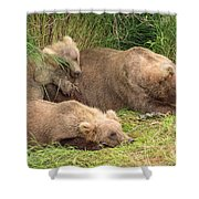 Family Nap Time Shower Curtain