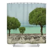 Family Of Trees. Shower Curtain
