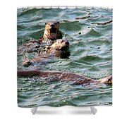 Family Play Time Shower Curtain