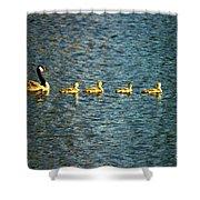 Family Shower Curtain by Scott Pellegrin
