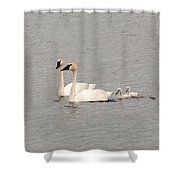 Family Swim Shower Curtain