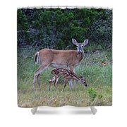 Family Visit Shower Curtain