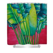 Fan Palm With Pink Shower Curtain