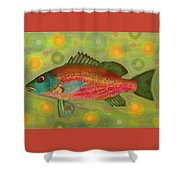 Fanciful Pink Snapper  Shower Curtain by Shelli Fitzpatrick
