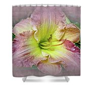 Fancy Daylily In Pink And Yellow Shower Curtain
