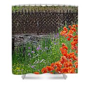 Fancy Foot Bridge And Poppies Shower Curtain by Stephanie Calhoun