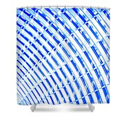 Fancy Roof 1 Shower Curtain