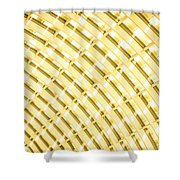 Fancy Roof 4 Shower Curtain
