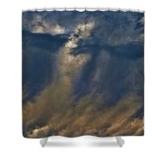 Fantastic Day Shower Curtain