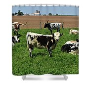Fantastic Farm On A Spring Day With Cows Shower Curtain