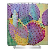 Fantasy Cactus Shower Curtain