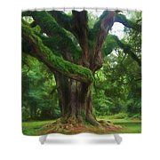 Fantasy Oak Shower Curtain
