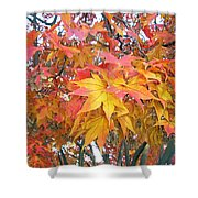 Fantasy Of Fall Shower Curtain