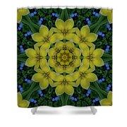 Fantasy Plumeria Decorative Real And Mandala Shower Curtain