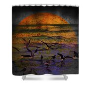 Fantasy Wings Shower Curtain by Susanne Van Hulst