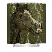 Fantasy Xanthus Shower Curtain