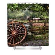 Farm - Horse - Grey Mare Shower Curtain