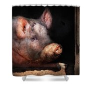 Farm - Pig - Piggy Number Two Shower Curtain