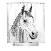 Farm Horse In Pointillism Shower Curtain