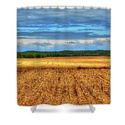 Golden Field Farm Li.ny Shower Curtain