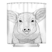Farm Pig In Pointillism Shower Curtain