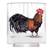 Farm Rooster Shower Curtain