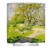 Farm Scene With Pecking Chickens Shower Curtain