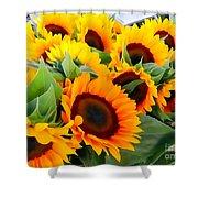 Farm Stand Sunflowers #8 Shower Curtain
