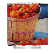 Farmers Market Produce Shower Curtain by Nadine Rippelmeyer