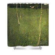 Farmhouse With Birch Trees Shower Curtain by Gustav Klimt