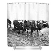 Farming: Ploughing, C1930 Shower Curtain