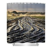 Farming Strawberries Shower Curtain