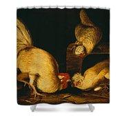 Farmyard Fowls Shower Curtain