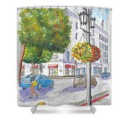 Farola With Flowers In Wilshire Blvd., Beverly Hills, California Shower Curtain